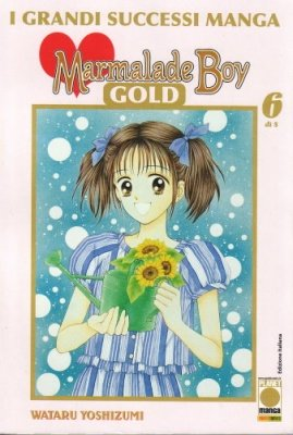 MARMALADE BOY GOLD 6
