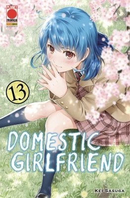 DOMESTIC GIRLFRIEND 13